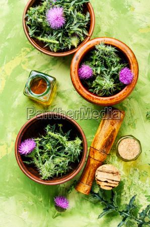natural, herbal, medicine - 25442504