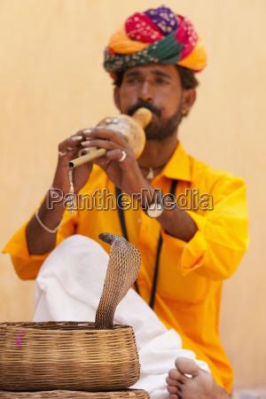 snake charming jaipur rajasthan india