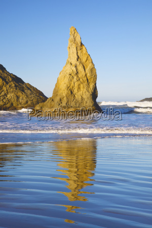 rock formations at low tide on
