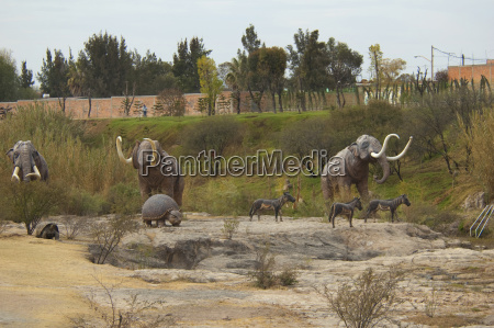 prehistoric animals at el caracol paleontological