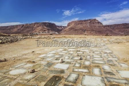 paving stones make a walkway at
