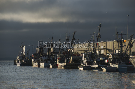 commercial fishing boats dock to unload