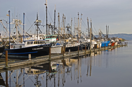 commercial fishing boats dock in the