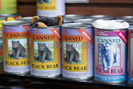 silly souvenir of a canned bear
