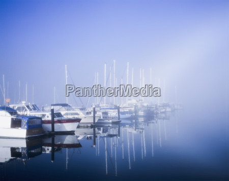 docked boats on a foggy morning