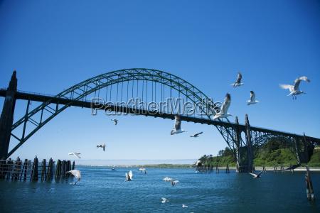 usa oregon also yaquina river bridge