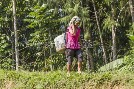 woman walking by rice field seri