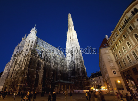 st stephens cathedral at night vienna