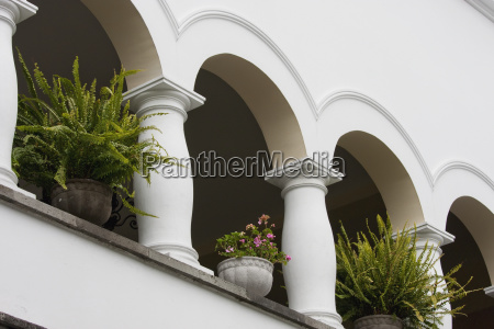 flower pots in palacio de carondelet