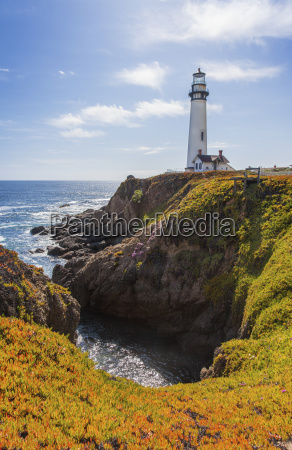 pigeon point lighthouse and blooming ice