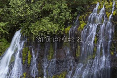 upper panther falls washington united states