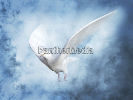 3d rendering of a white peace