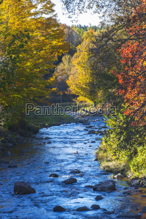 small river with rocks in autumn