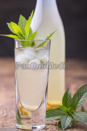 homemade ginger lemonade with mint leaves