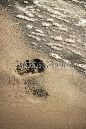 summer vacation walk on beach