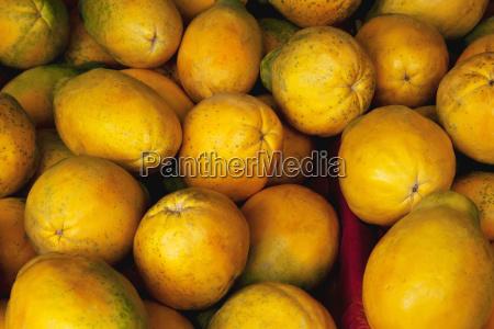 close up view of ripe papaya