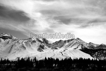 black and white image of a