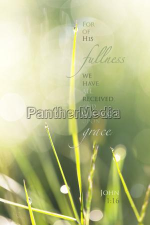 inspirational artwork with a bible verse