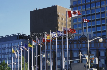 flags flying outside large buildings