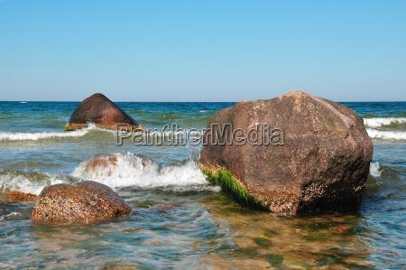 foundlings on the baltic sea coast