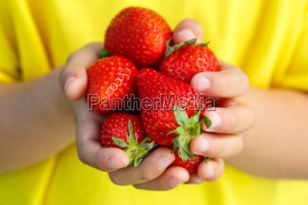 strawberries fruit berries strawberry fruit berry