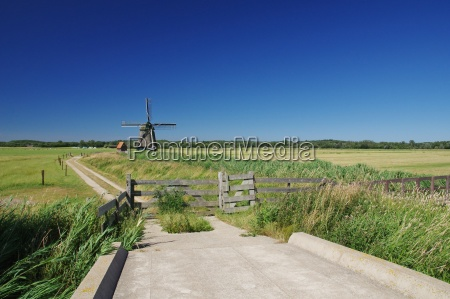 windmill philisteinse molen near bergen northern