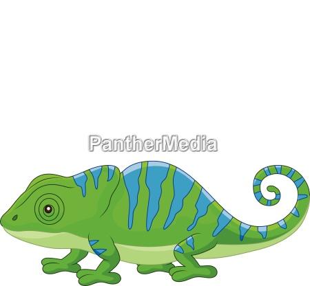 cartoon cute chameleon