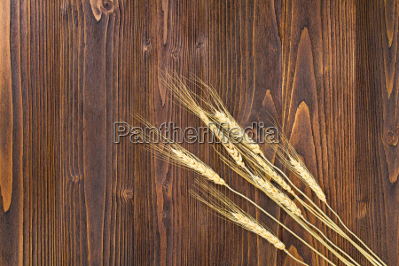 ear of paddy on wooden table
