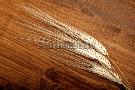 wheat on table