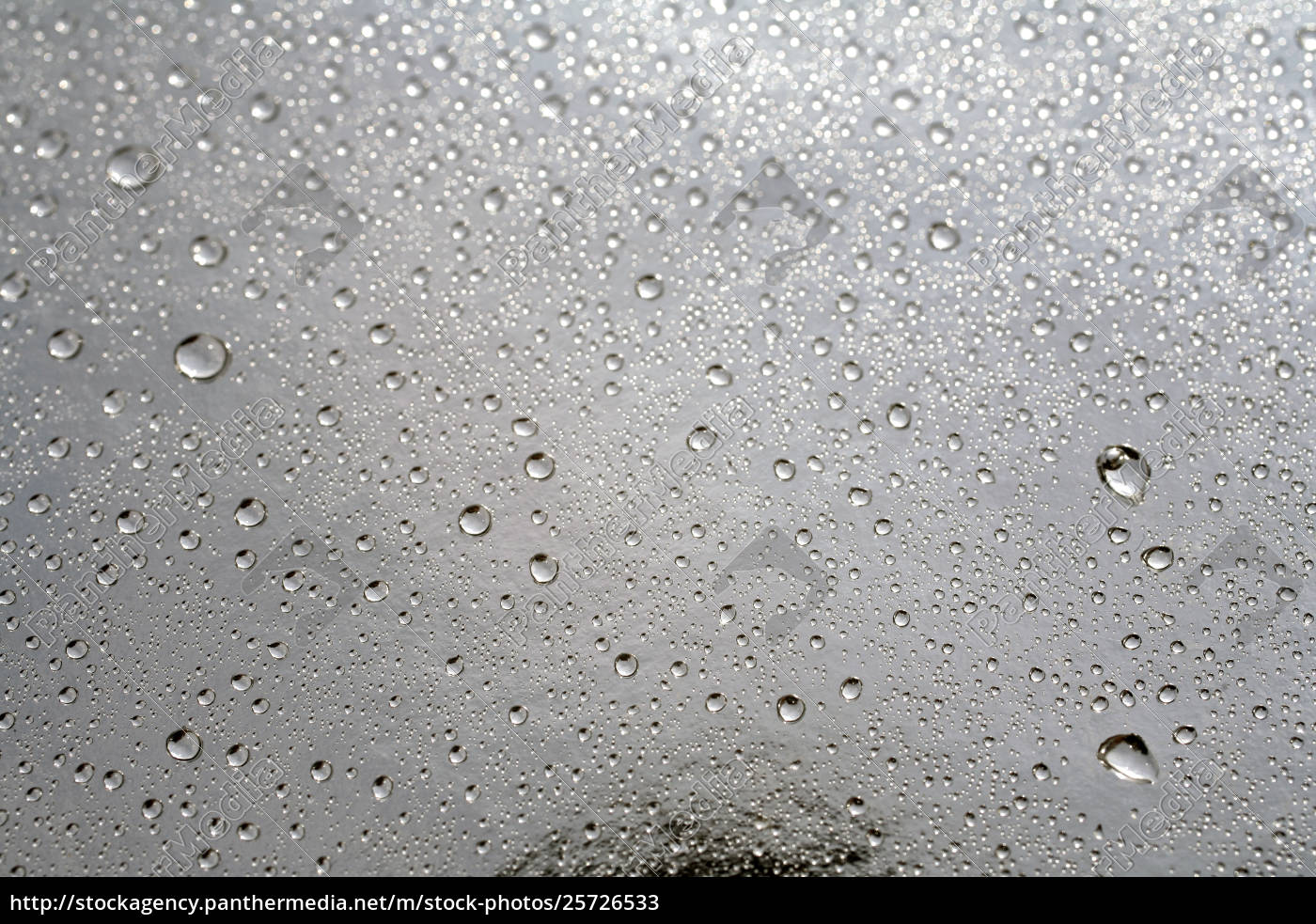 , rain, drops, background - 25726533