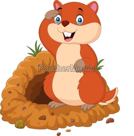 funny cartoon groundhog in front of