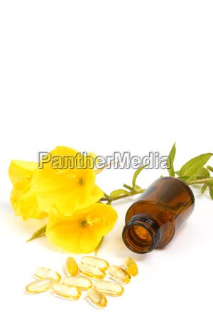 gelatin capsules with evening primrose