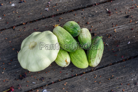 pattypan squash and few cucumbers harvested