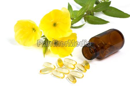 gelatin capsules with evening primrose oil