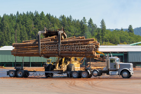 logs unloading off truck in lumber