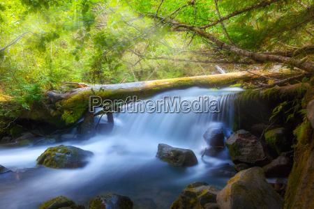 waterfall along cold spring creek in