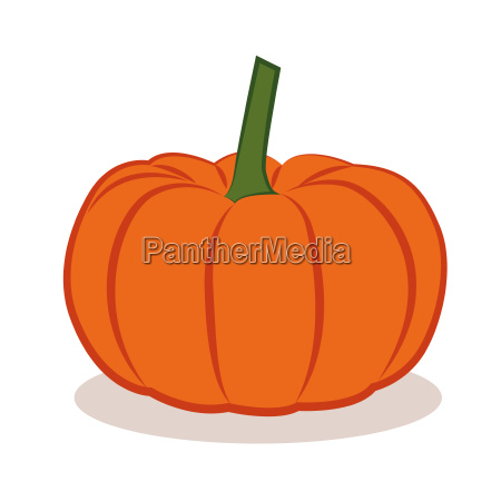 orange pumpkin vegetable autumn graphic