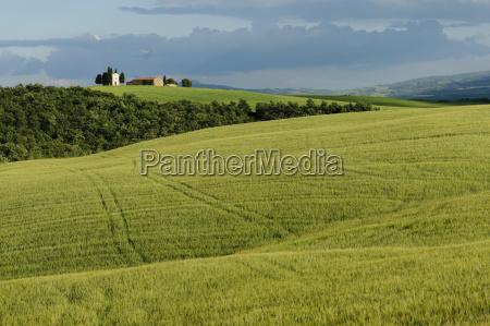 tuscany landscape italy europe