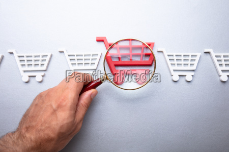 person looking at shopping cart through
