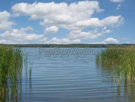 lake zierker see in neustrelitz mecklenburg