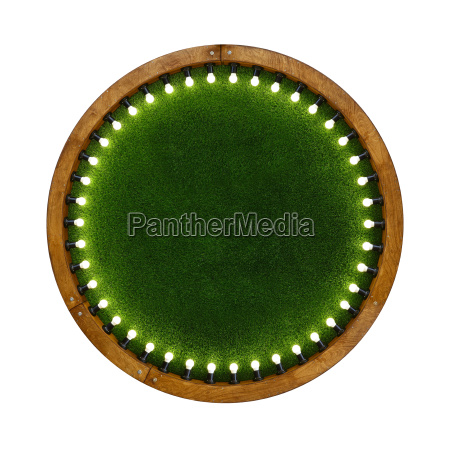 wooden ring light frame with green