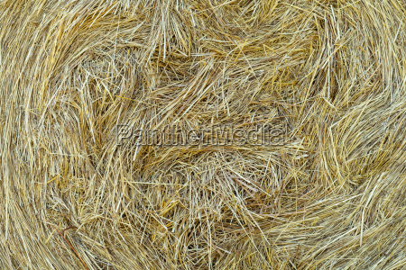pressed hay close up background