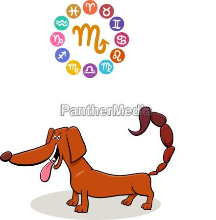 scorpio zodiac sign with cartoon dog