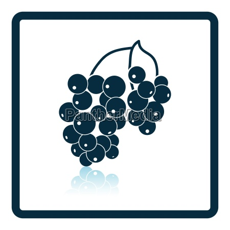 icon of black currant