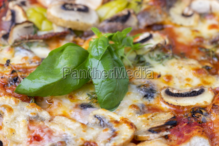 closeup of a pizza with basil