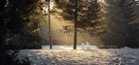 magic, winter, scene, in, the, woods - 25840302