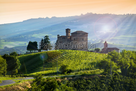 view on the castle of grinzane
