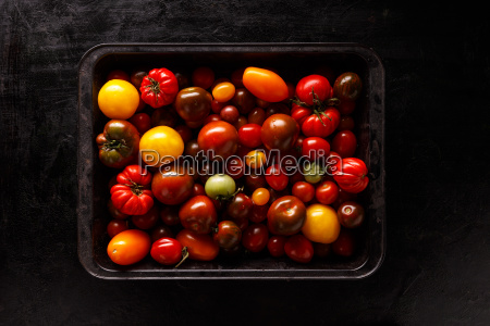 assortment of colored fresh tomatoes