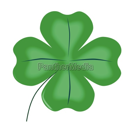 lucky four leaf shamrock