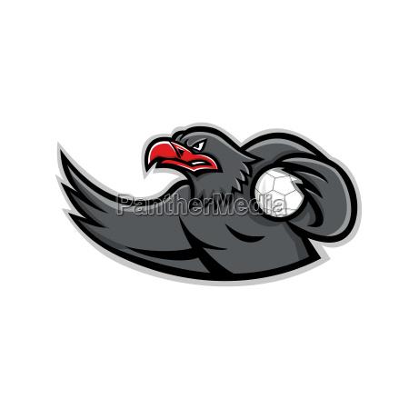 eagle handball player mascot